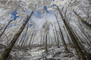 monte-javornik-invierno-eslovenia-marko-korosec-5