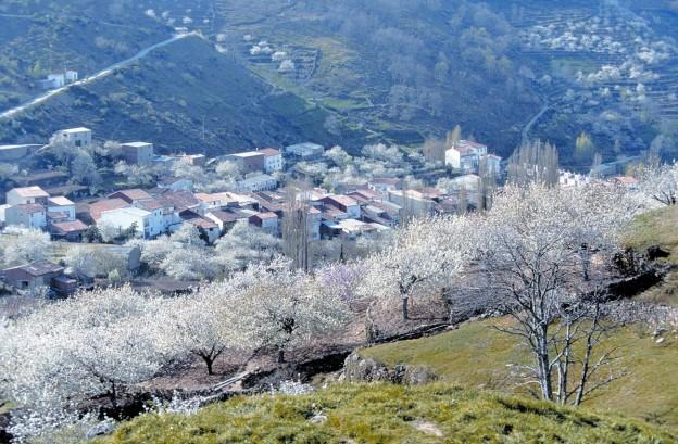 valle-del-jerte-cáceres-extremadura