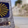 camino-santiago-verano